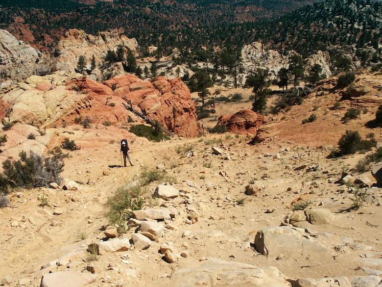 Jette Carr struggles up a mountain south of Bicknell, Utah, during a walk across the state, summer of 2003.  The hike was part of a trek spanning from the bottom to the top of Utah to each boarder – a journey that took 43 days and was nearly 700 miles long.  (Courtesy photo)