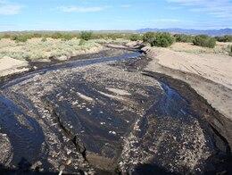 Ash and debris in a tributary of the Rio Grande.