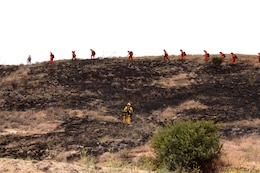 Fire fighters from across San Diego walk the perimeter of a controlled burn to ensure it extinguished during this year's wild land fire training exercise on Camp Pendleton, June 15. During the training, instructors started small controlled fires, and had each crew focus on working together to surround the fire and contain it from spreading outwards.