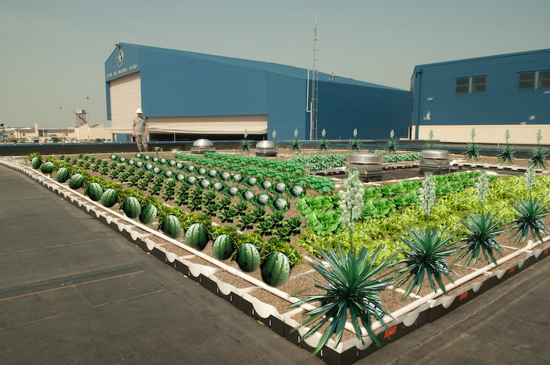An artist rendition of the newly constructed vegetative roof on top of the add-on maintenance building at Naval Air Station Fort Worth, Joint Reserve Base, Texas, shows the possibilities of 'farm town' coming to life. The first vegetative roof installed on base is part of an intiative to reduce energy consumption. The 2,700 square foot garden is currently planted with yucca plants and buffalo grass. Future plants are under consideration.(Graphics by Senior Master Sgt. Elizabeth Gilbert)