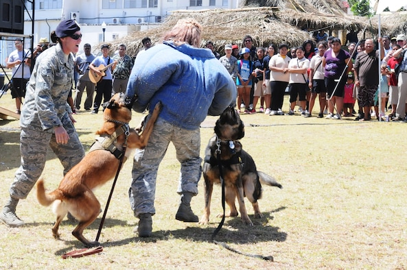 ANDERSEN AIR FORCE BASE, Guam - 36th Security Forces military workings dogs, Cila (Left) and Mike (Right), hold down a role-player after receiving commands from Staff Sgt. Tina Stelly, 36 SFS dog handler, March 13. This demonstration is just to show that two dogs can work together to apprehend a suspect. (U.S. Air Force photo/Senior Airman Carlin Leslie)
