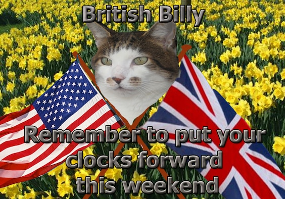 In all the excitement, don't forget to set your clocks forward by one hour March 25, officially the start of British Summer Time. We may be losing an hour, but with extra daylight in the evenings and a long summer ahead, there's plenty to look forward to after the clocks change. Ask Billy about the things puzzling about about life and culture in the U.K., and if he doesn't know the answer, he has ways and means of finding out. Feel free to send him any questions, and when he isn't sleeping or hunting, he'll try and put a few thoughts together to help you out.