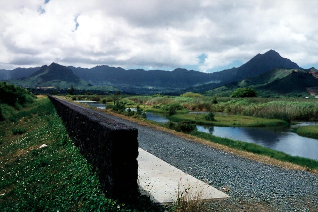 Kawai Nui Marsh, Oahu