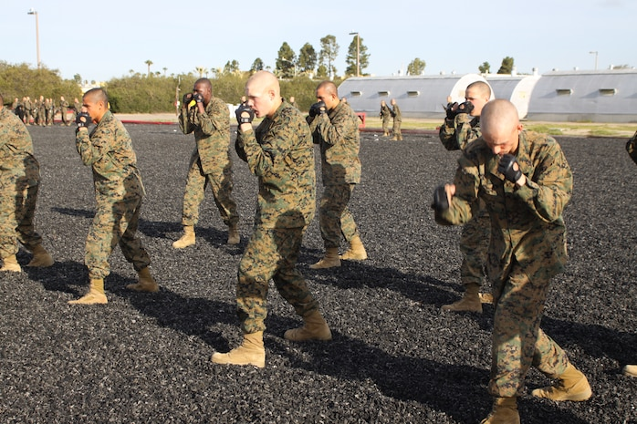 Company F recruits wait in a warrior stance to demonstrate blank March 28 while testing out for their tan belt aboard Marine Corps Recruit Depot San Diego. Once recruits reach third phase their drill instructors expect the recruits to be able to apply any tan belt move if asked.
