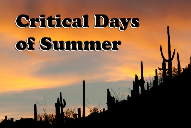 Critical Days of Summer, 162nd Fighter Wing safety tips. (U.S. Air Force photo/Tech. Sgt. Hollie Hansen)