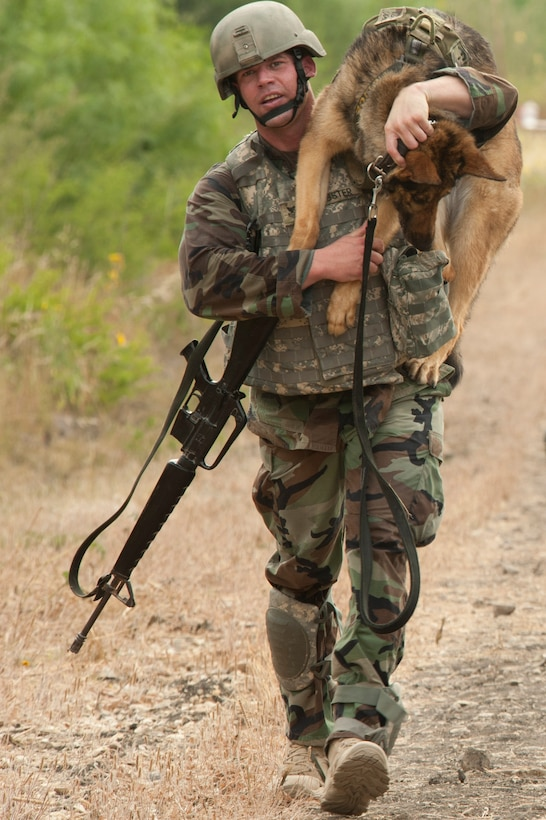 U.S. Navy Petty Officer 1st Class Nicholas Webster, master at arms and military working dog handler, carries Fergina, a 6-year-old patrol and explosives detection dog, as they compete during the Department of Defense Military Working Dog Trials at Joint Base San Antonio-Lackland, Texas, May 4, 2012. Military working dogs and their handlers from the Army, Navy, Air Force and Marines competed in the event. Webster is stationed at the Naval Air Station in Corpus Christi, Texas. (U.S. Air Force photo/Senior Airman Corey Hook)