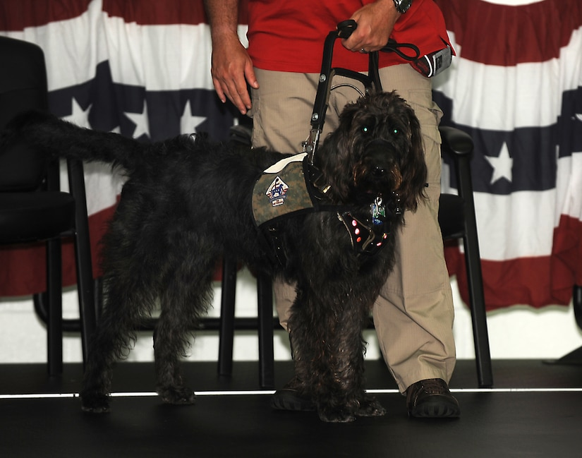 Retired Marine Staff Sgt. Dean Suthard stands with his new service dog, Esther, during a ceremony at the Naval Consolidated Brig Charleston May 9. During the ceremony, NCBC, in partnership with Carolina Canines for Service, presented Suthard, a wounded service member, his service dog. CCFS is a non-profit health and human services organization that trains service dogs for veterans with disabilties. (U.S. Air Force photo/Airman 1st Class Ashlee Galloway)