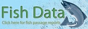 Fish data button