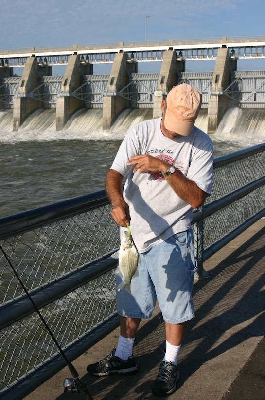 Fisherman catches a white bass near the spillway at Gavins Point Project.