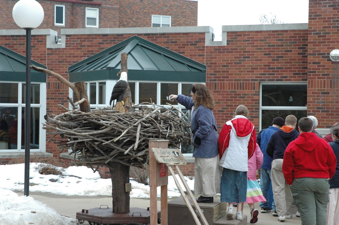 Replica eagle nest outside Central College