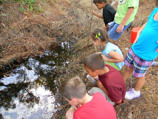 Children of the Child Development Center observe aquatic wildlife during the Hurlburt Field Youth Center Wetland Stream Project at Hurlburt Field, Fla.  The outdoor activities allowed children to learn about the local ecosystem and wildlife.  (Courtesy photo by Catherine Goss)