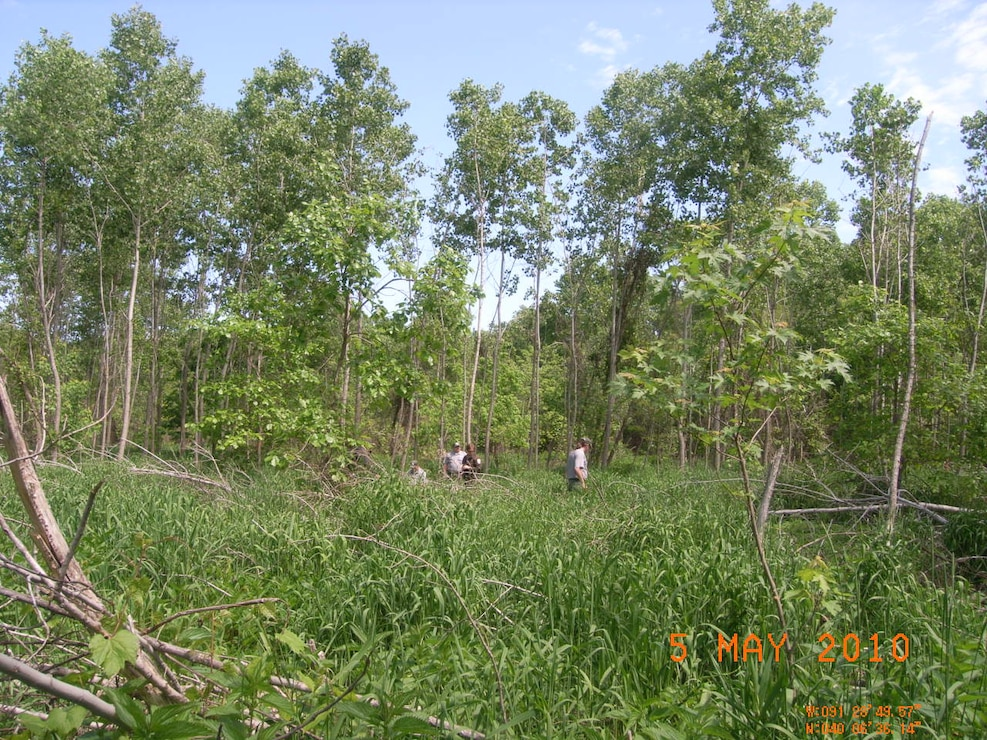The Mississippi River Project Foresters are shown here near Pool 21 of the Upper Mississippi River.