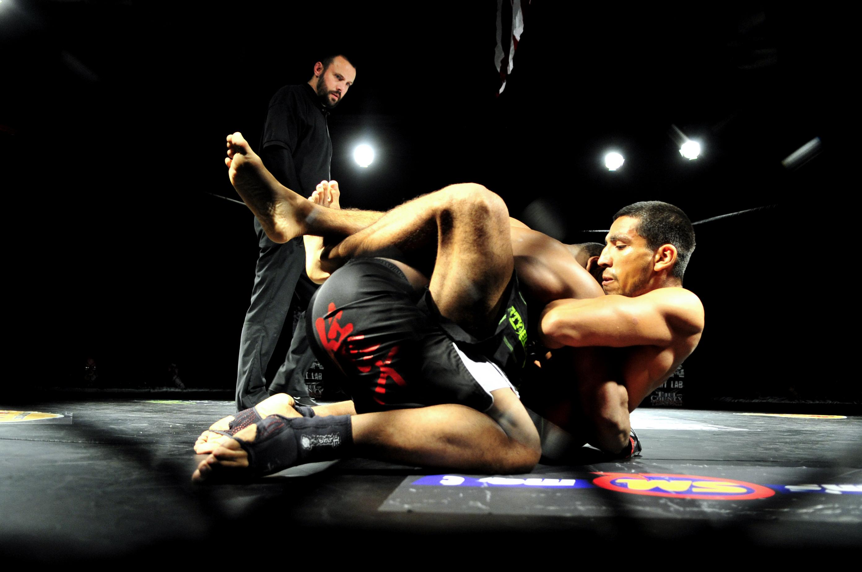 Αποτέλεσμα εικόνας για mixed martial arts