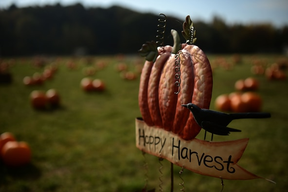 SPANGDAHLEM AIR BASE, Germany – A sign sits in a field of pumpkins near the child development center during a pumpkin patch event Oct. 25, 2012.  Children enrolled in the 52nd Force Support Squadron Airman and Family Services Flight could come to this event and pick out a pumpkin of their choice to take home for free. (U.S. Air Force photo by Airman 1st Class Gustavo Castillo/Released)