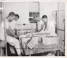 Some things stayed the same after the Air National Guard became a separate organization. Airmen on KP peel potatoes during summer training camp, 1952.