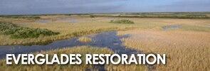 Everglades Web Ad