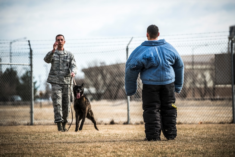 U.S. Air Force Staff Sgt. Robert Wilson (left), 366th Security Forces Squadron dog handler, explains his next demonstration with Military Working Dog Troll and Staff Sgt. Lucas Medelez at the 366 SFS military working dog kennel at Mountain Home Air Force Base, Idaho, April 1, 2013. Wilson demonstrated different commands and scenarios where military working dogs are used to maintain control of a suspect. (U.S. Air Force photo/Tech. Sgt. Samuel Morse)