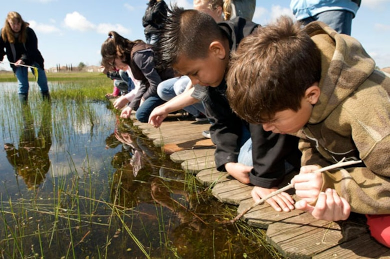 Splash offers local school children a chance to step into the wild, fostering environmental awareness using Mather's rare wetland ecosystem, unique to California.