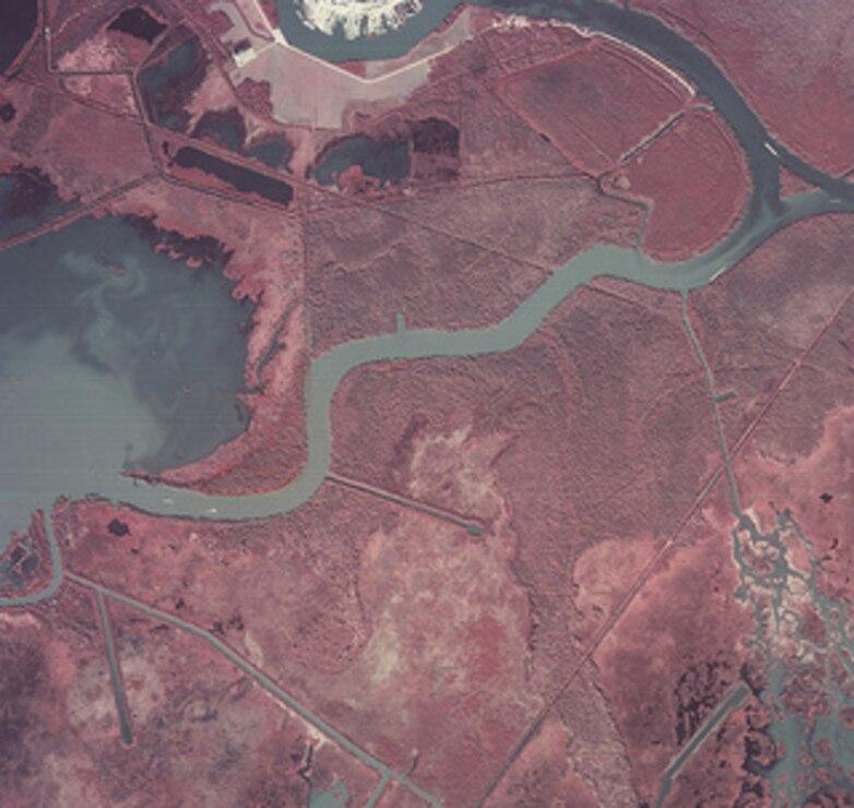 Atchafalaya Avoca Island East 1985
