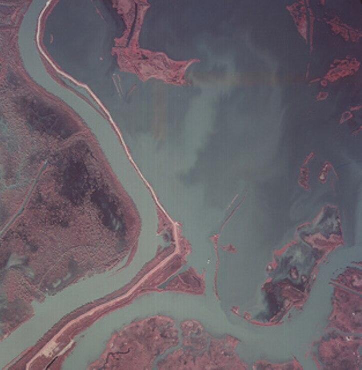 Atchafalaya Avoca Island West 1985