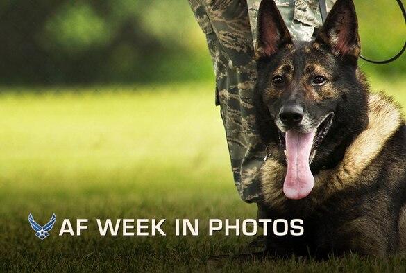 (U.S. Air Force photo/Senior Airman Brittany Y. Auld)