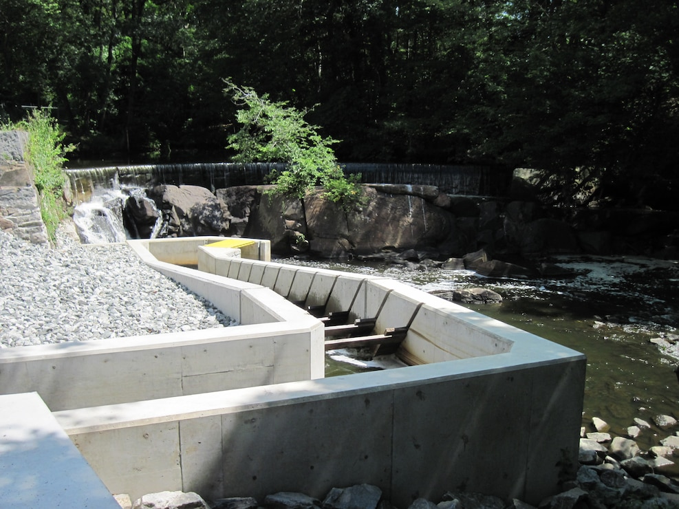 Hunt's Mill Dam Fish Ladder