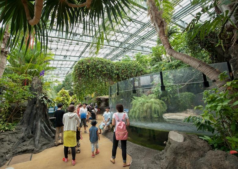 Ueno Zoo visitors walk through the vivarium Aug. 6, 2013. The vivarium houses crocodiles, frogs, turtles and snakes. (U.S. Air Force photo by Senior Airman Michael Washburn)