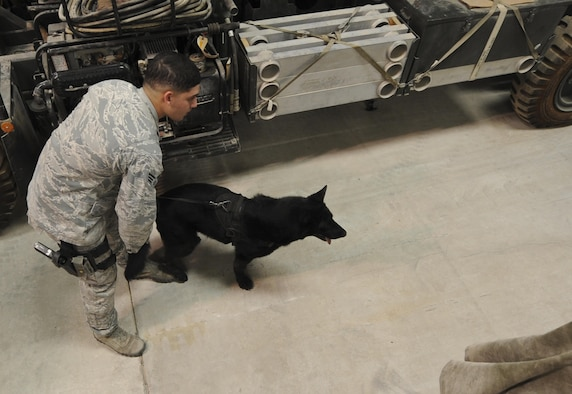 Senior Airman Daniel Alvarez, 380th Expeditionary Security Forces Squadron military working dog handler, and his MWD, Lola, search for explosives or narcotics in a warehouse at an undisclosed location in Southwest Asia Aug. 8, 2013. The training was designed to test the MWD's senses for detecting explosives or narcotics in different quantities. Alvarez and Lola are deployed from Moody Air Force Base, Ga., and Alvarez calls Northridge, Calif., home.