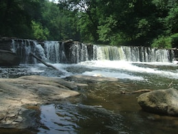 The movement of water, sediment and fauna is affected by several dams along the mainstem of the Wissahickon Creek.  A variety of options are under consideration to allow for more natural passage.