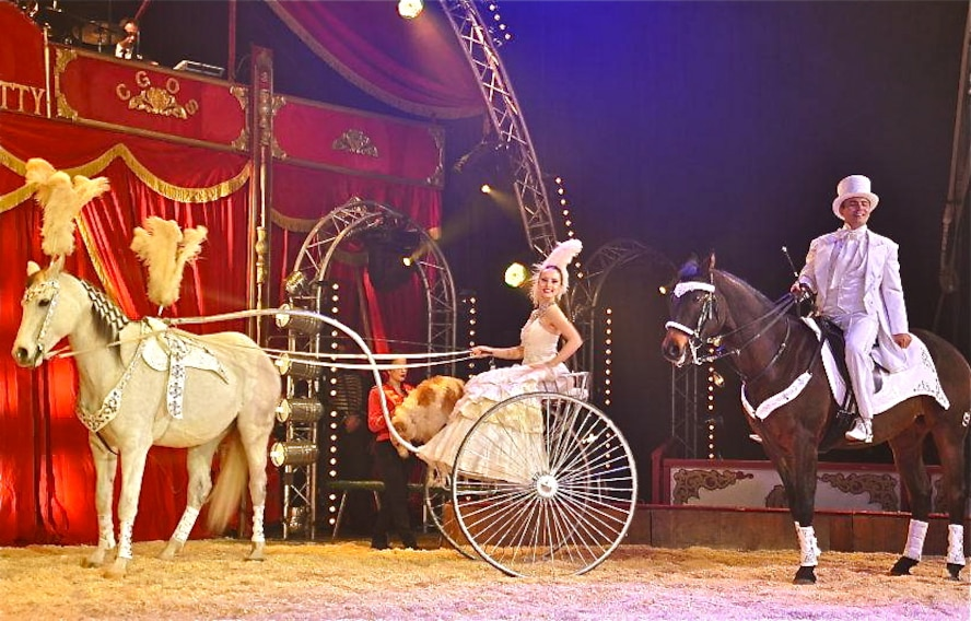 Horse trainers and circus performers, Duo Urunov, will present a horse gala show during this year's Christmas Circus of Trier, Dec. 23 through Jan. 5. The Duo Urunov won prizes at the International Circus Festivals of Montecarlo and Massy before, as rewards for their outstanding performances. Circus shows are scheduled at Trier's Moselauen grounds daily, at 3:30 and 7:30 p.m., except for Dec. 29 and Jan. 5, when there is one show at 11 a.m. and a second one at 3:30 p.m. There will be no shows on Dec. 24 or on New Year's Day. (Courtesy photo)