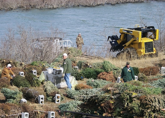 Corps wants to recycle your christmas tree for fish cover for Millwood lake fishing report