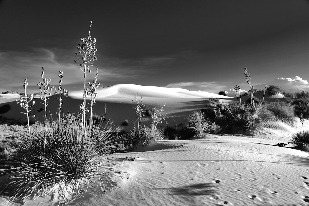 """Evening light at White Sands National Monument"" This photo placed first based on employee voting.  Photo by Richard Banker, summer 2013."