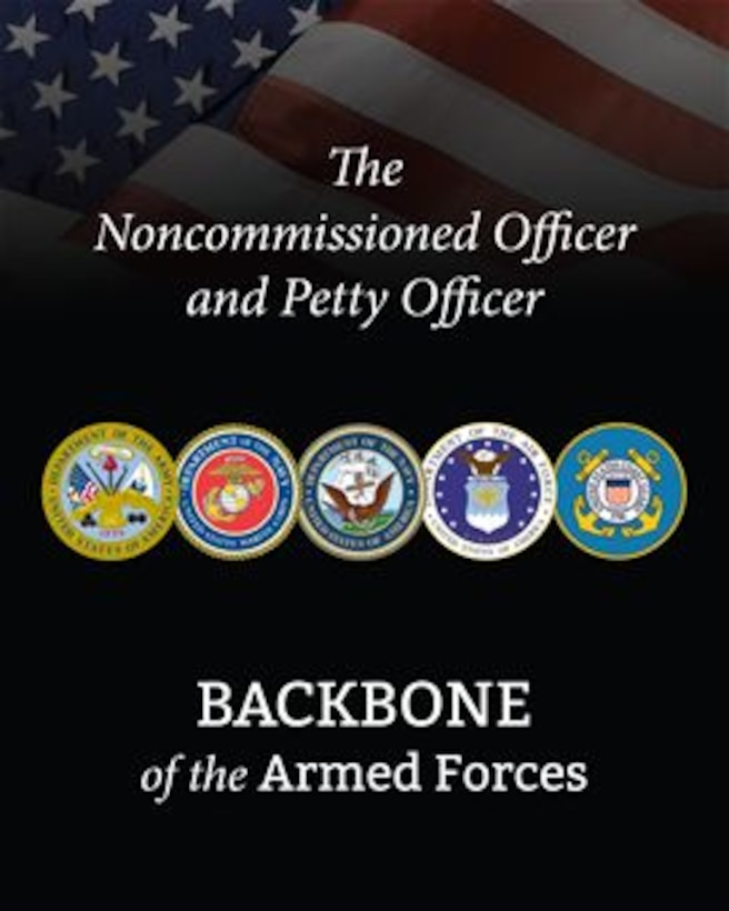 The Noncommissioned Officer and Petty Officer Book cover.