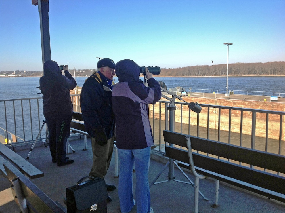 Eagle watching at Lock and Dam 16 on the Mississippi River.