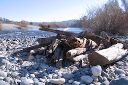 A large woody material placement sits along the lower Yuba River as part of a U.S. Army Corps of Engineers Sacramento District pilot project to improve fish habitat. These fish hideouts were placed at varying distances from the center of the stream to come into play during changing seasonal river levels.