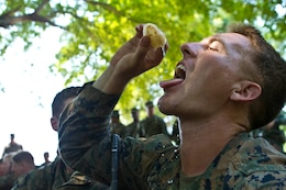 Lance Cpl. Eric M. Bullard, a rifleman with the Maritime Raid Force, 31st Marine Expeditionary Unit, and a native of Anaheim, Calif., squeezes the liquid out of a native fruit of the Thai jungle during a jungle survival class taught by Royal Thai Marines as a part of Cobra Gold 2013 here, Feb. 20. Cobra Gold demonstrates the resolve of the U.S. and participating nations to increase interoperability, and promote security and peace throughout the Asia-Pacific region. The 31st MEU is the only continuously forward-deployed MEU and is the Marine Corps' force in readiness in the Asia-Pacific region.
