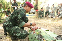 Royal Thai Army Special Forces Master Sgt. 2nd Class Rittichai Soontorn demonstrates how to pluck feathers from a chicken during a jungle survival class Feb. 17 at Camp Akatosrot, Phitsanulok province, Kingdom of Thailand, as part of exercise Cobra Gold 2013. Thai soldiers participating in the class are with 7th Regiment, 7th Division, 3rd Region, Royal Thai Army. U.S. soldiers are with Baker Company, 2nd Battalion, 9th Infantry Regiment, 1st Armored Brigade Combat Team, 2nd Infantry Division. Cobra Gold, in its 32nd iteration, is a multinational exercise that promotes regional prosperity, security and cooperation among partner militaries.