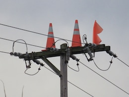 In an attempt to discourage nesting on open poles, Penn Power has placed orange cones and flags on poles.