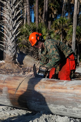 Lance Cpl. Justin Musselman, Marine Wing Support Squadron 273 combat engineer, utilizes a chainsaw to cut a fallen tree on Hunting Island, Feb. 20. The squadron's last visit on Hunting Island was in 1997 to help with erosion control.