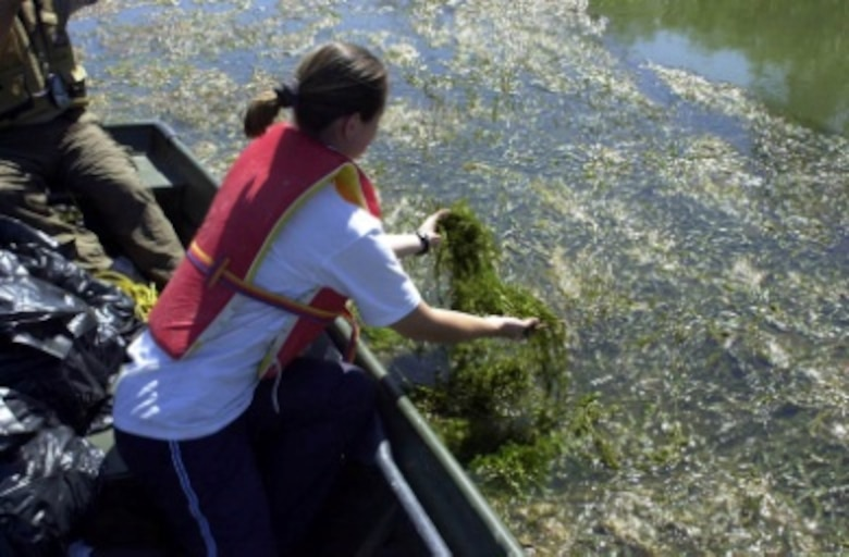 Sampling, characterization, and biocontrol of aquatic invasive plants in lakes and reservoirs are examples of the many research applications that this facility supports.