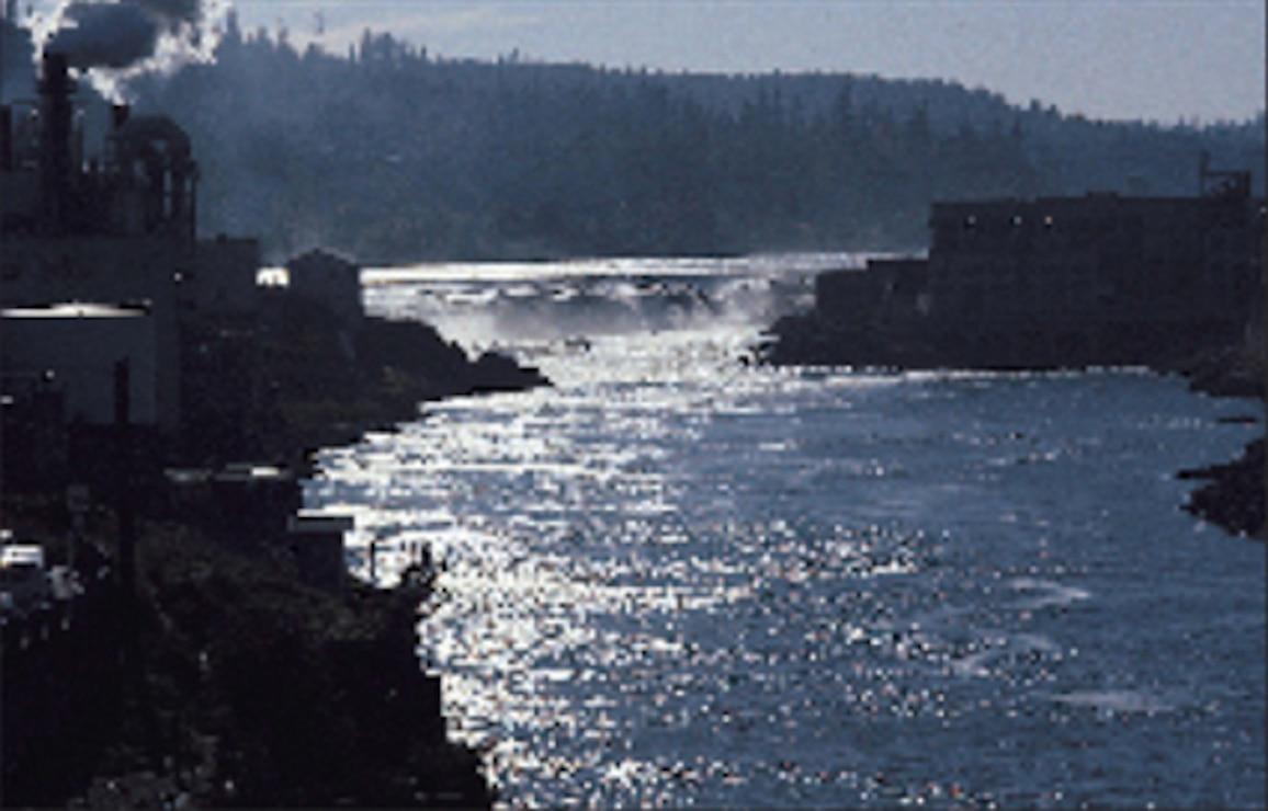 Willamette Falls Locks area