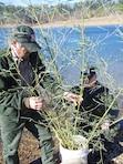 Two Vicksburg District rangers prepare a fish habitat at Sardis Lake.