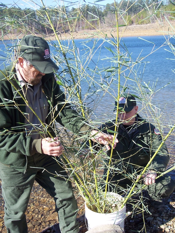 Two Vicksburg District rangers prepare a fish habitat at Sardis Lake.