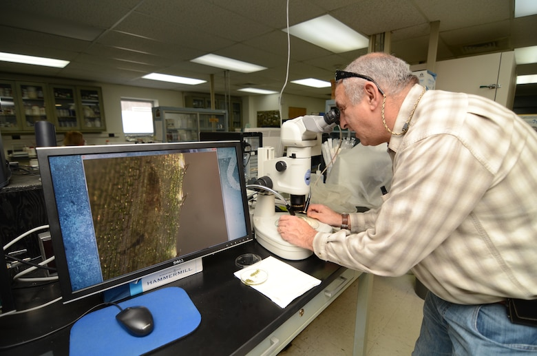 Researchers at EL examine invasive species.