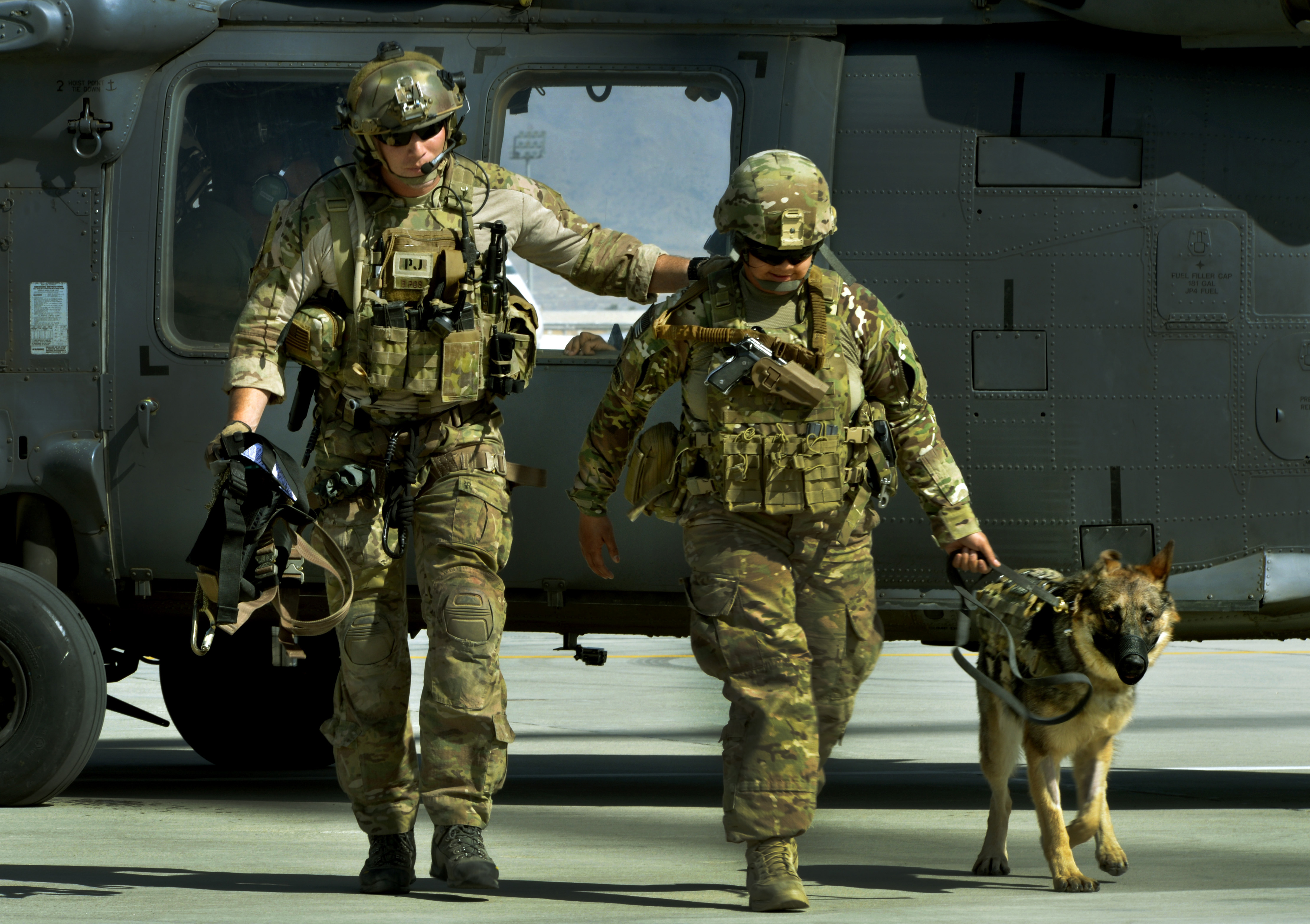 Dog Handler Army Training