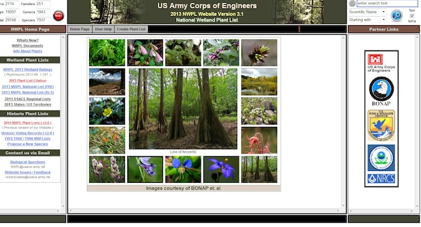 The national wetland plant list received its first update since going web based in 2012. The list features 7937 plant species, which is a reduction of 263 species from 2012. (U.S. Army image)