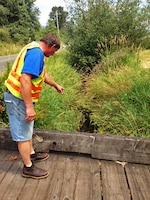 Property owner Ted Strand points out the canary grass in the existing creek, which flows through a roadside ditch between the street and his land.