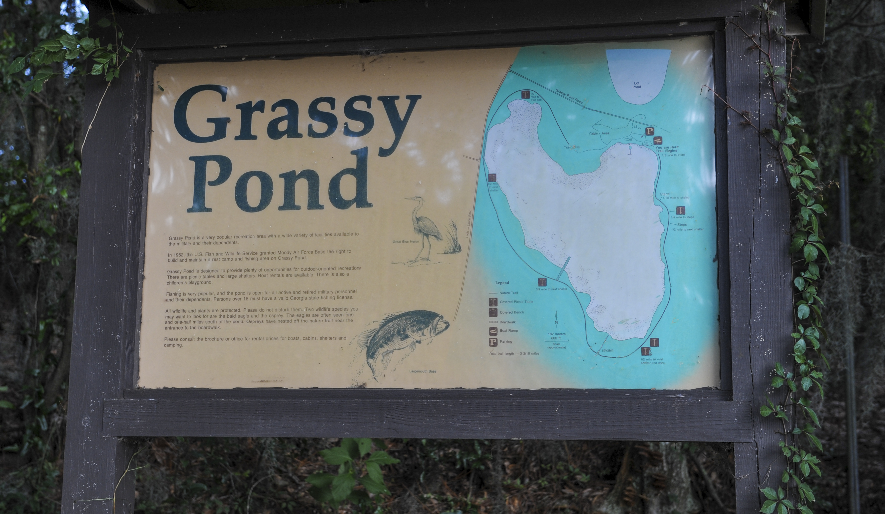 Grassy pond offers service members outdoor activities for Pond service