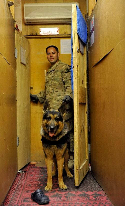 Staff Sgt. Max Soto, 455th Expeditionary Security Force Group, military dog handler, searches third country national employee living quarters for drugs and other illegal items during a Task Force Colonist event on Bagram Airfield, Afghanistan, May 30.  His primary role during Task Force Colonist is to look for narcotics, but he and his dog also search for other contraband.  Soto is deployed from McConnell Air Force Base, Kan. (U.S. Air Force photo/ Staff Sgt. Stephenie Wade)