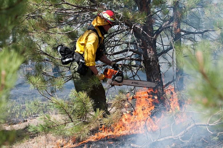 An Air Force Academy firefighter cuts down a tree in an attempt to control the spread of the Black Forest Fire June 12, 2013. A total of 16 Academy personnel and five vehicles are assisting with fire efforts alongside firefighters from Peterson and Schriever Air Force bases, Fort Carson's 4th Infantry Division and the Colorado National Guard. (U.S. Air Force photo/Master Sgt. Christopher DeWitt)